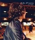 Mr.Polo男装45218款